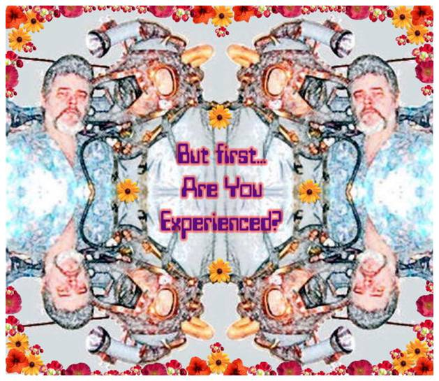 Are you experienced (4)